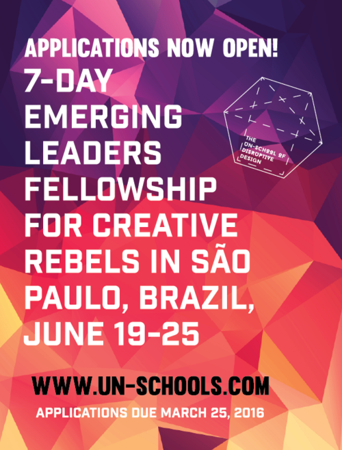 un-school+emerging+leaders+fellowship+in+sao+paulo-2